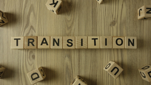 Communities in Transition (CIT) Project